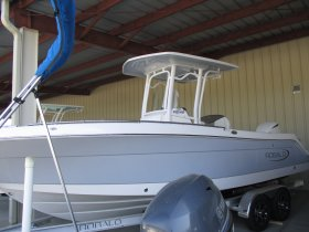 2019 Robalo 242 Explorer for sale at APOPKA MARINE in INVERNESS, FL
