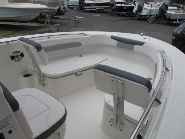 A 202EX is a Power and could be classed as a Bay Boat, Center Console, Fish and Ski, Saltwater Fishing,  or, just an overall Great Boat!