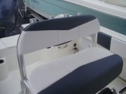 Leaning Post 2020 Robalo R200 for sale in INVERNESS, FL